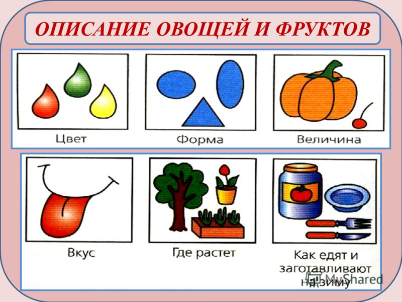 Схема рассказа описания овощей